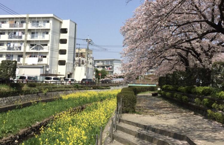 上尾市文化センターお花見企画